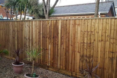 Fencing-Bournemouth